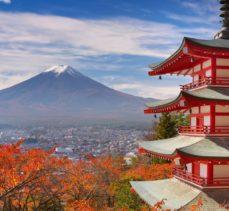 Arts & Culture Of Japan