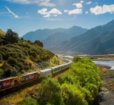 New Zealand Rail Experience