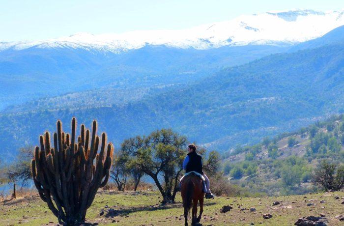 Wonders Of Chile