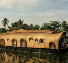 Kerala – Backwaters, Hills & Wildlife