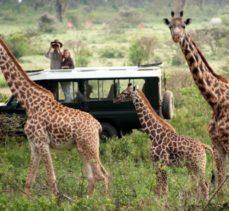 Green Season Kenya Safari & Beach