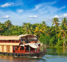 Kerala – Backwaters, Beaches & Wildlife